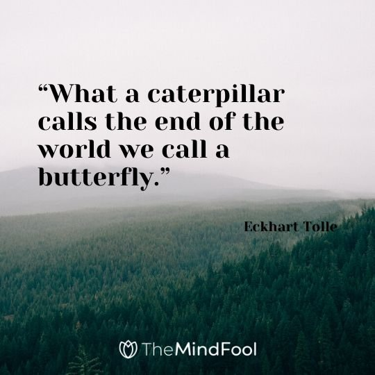 """What a caterpillar calls the end of the world we call a butterfly."" - Eckhart Tolle"