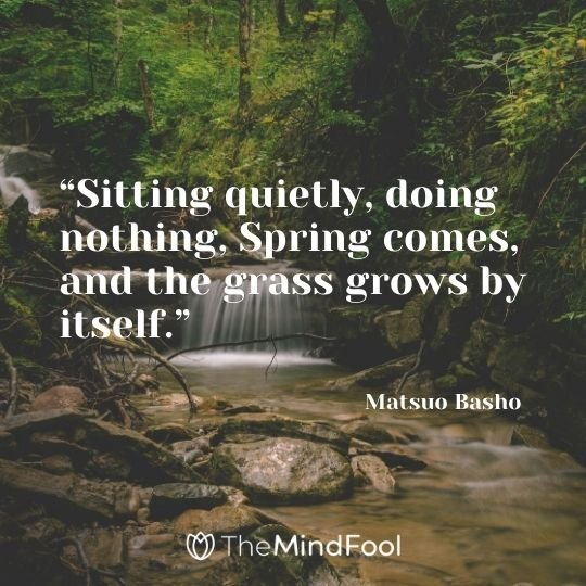 """Sitting quietly, doing nothing, Spring comes, and the grass grows by itself."" - Matsuo Basho"