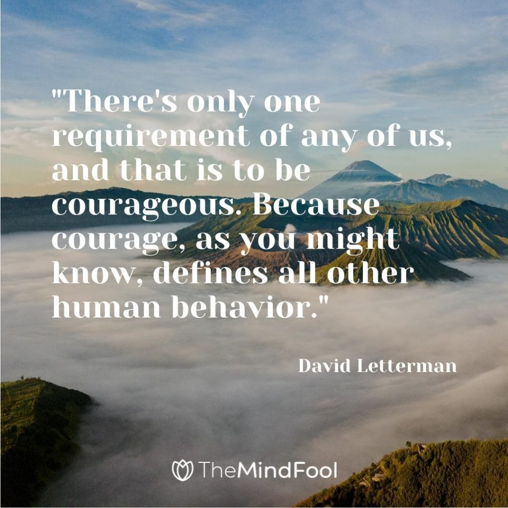 """There's only one requirement of any of us, and that is to be courageous. Because courage, as you might know, defines all other human behavior.""- David Letterman"