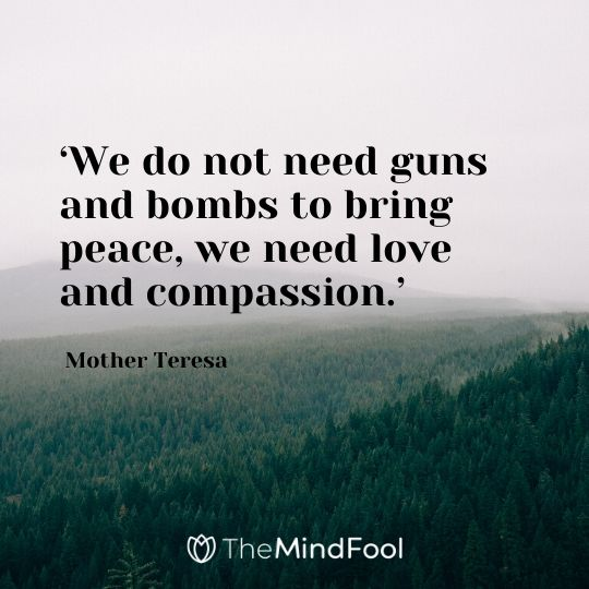 'We do not need guns and bombs to bring peace, we need love and compassion.' - Mother Teresa