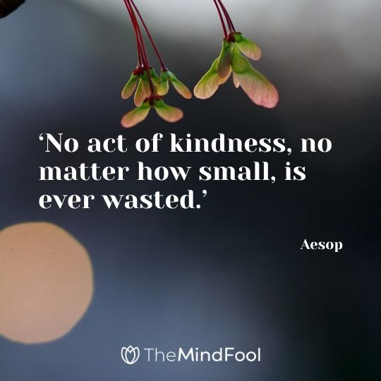 'No act of kindness, no matter how small, is ever wasted.' -  Aesop