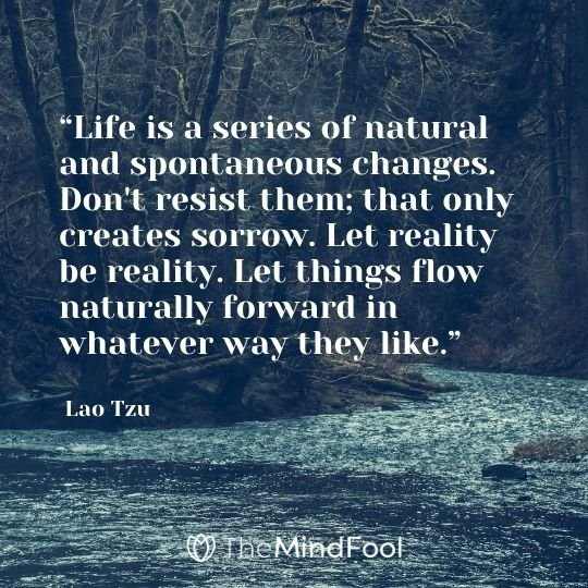 """Life is a series of natural and spontaneous changes. Don't resist them; that only creates sorrow. Let reality be reality. Let things flow naturally forward in whatever way they like."" ― Lao Tzu"