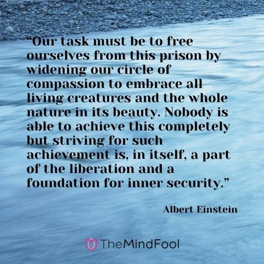 """Our task must be to free ourselves from this prison by widening our circle of compassion to embrace all living creatures and the whole nature in its beauty. Nobody is able to achieve this completely but striving for such achievement is, in itself, a part of the liberation and a foundation for inner security."" - Albert Einstein"