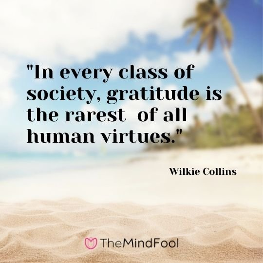 """In every class of society, gratitude is the rarest  of all human virtues."" - Wilkie Collins"