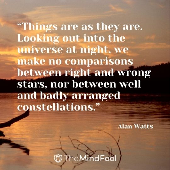 """Things are as they are. Looking out into the universe at night, we make no comparisons between right and wrong stars, nor between well and badly arranged constellations."" - Alan Watts"