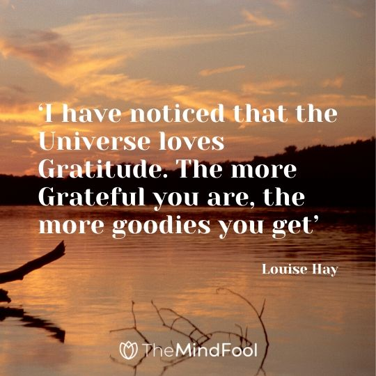 'I have noticed that the Universe loves Gratitude. The more Grateful you are, the more goodies you get' -  Louise Hay