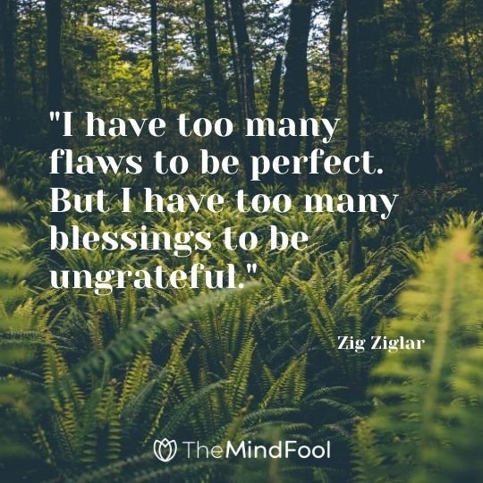 """I have too many flaws to be perfect. But I have too many blessings to be ungrateful."" - Zig Ziglar"