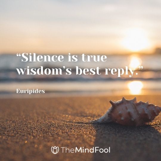 """Silence is true wisdom's best reply."" – Euripides"