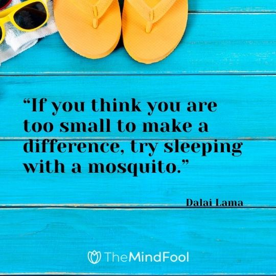 """If you think you are too small to make a difference, try sleeping with a mosquito."" - Dalai Lama"