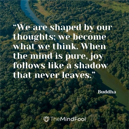 """We are shaped by our thoughts; we become what we think. When the mind is pure, joy follows like a shadow that never leaves."" - Buddha"