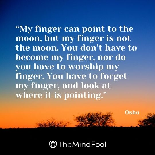 """My finger can point to the moon, but my finger is not the moon. You don't have to become my finger, nor do you have to worship my finger. You have to forget my finger, and look at where it is pointing."" - Osho"