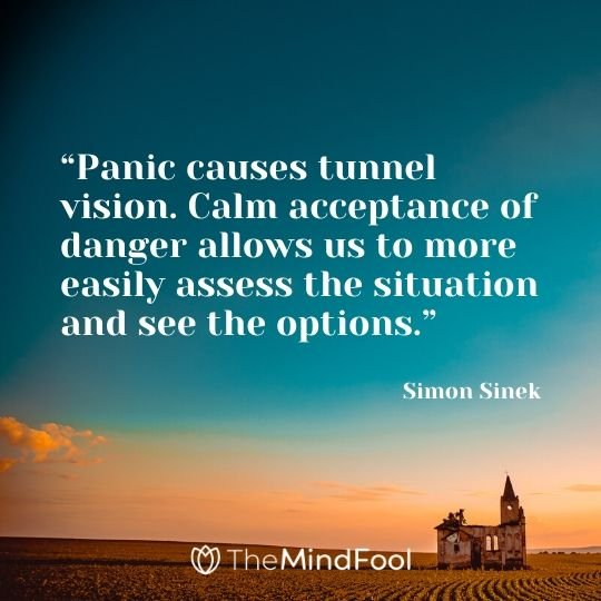 """Panic causes tunnel vision. Calm acceptance of danger allows us to more easily assess the situation and see the options."" – Simon Sinek"