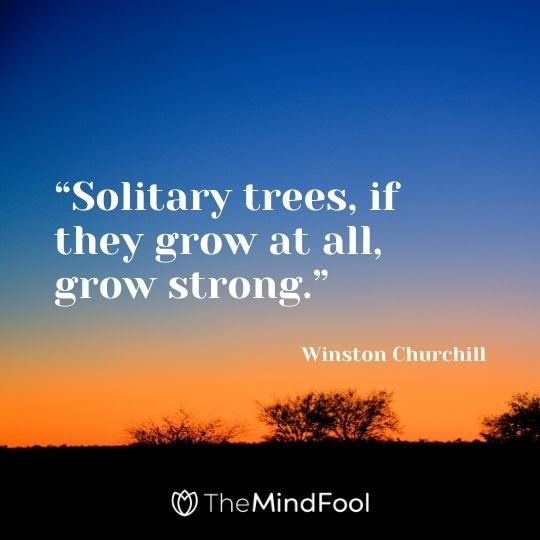 """Solitary trees, if they grow at all, grow strong."" - Winston Churchill"