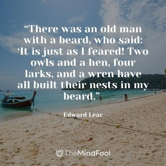 """""""There was an old man with a beard, who said: 'It is just as I feared! Two owls and a hen, four larks, and a wren have all built their nests in my beard."""" – Edward Lear"""