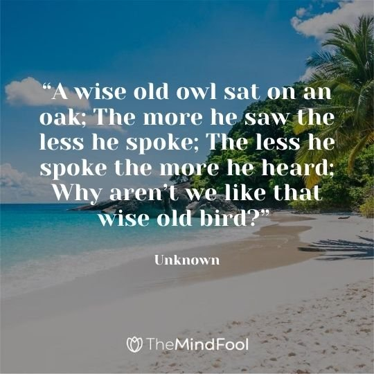 """""""A wise old owl sat on an oak; The more he saw the less he spoke; The less he spoke the more he heard; Why aren't we like that wise old bird?"""" ~Unknown"""