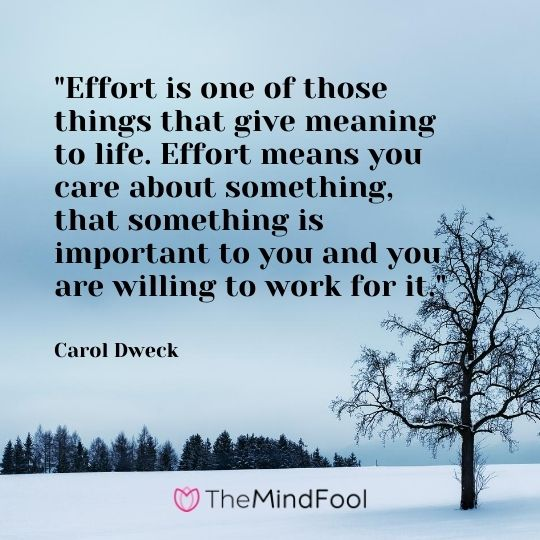 """Effort is one of those things that give meaning to life. Effort means you care about something, that something is important to you and you are willing to work for it.""---Carol Dweck"