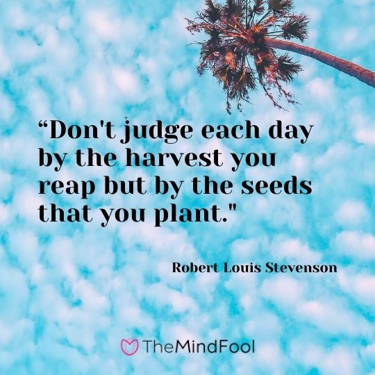 """Don't judge each day by the harvest you reap but by the seeds that you plant.""---Robert Louis Stevenson"