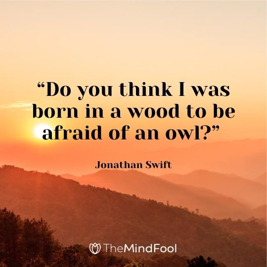 """""""Do you think I was born in a wood to be afraid of an owl?"""" – Jonathan Swift"""