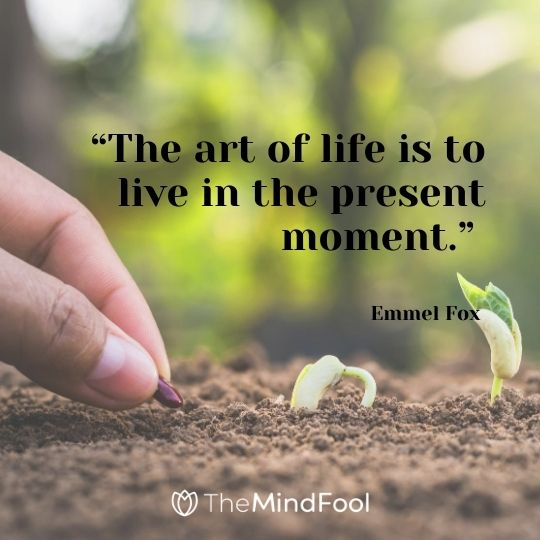"""The art of life is to live in the present moment."" – Emmel Fox"