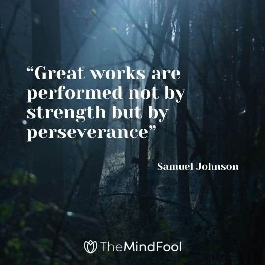 """Great works are performed not by strength but by perseverance""---Samuel Johnson"