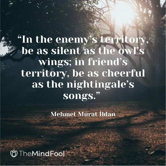 """In the enemy's territory, be as silent as the owl's wings; in friend's territory, be as cheerful as the nightingale's songs."" – Mehmet Murat İldan"
