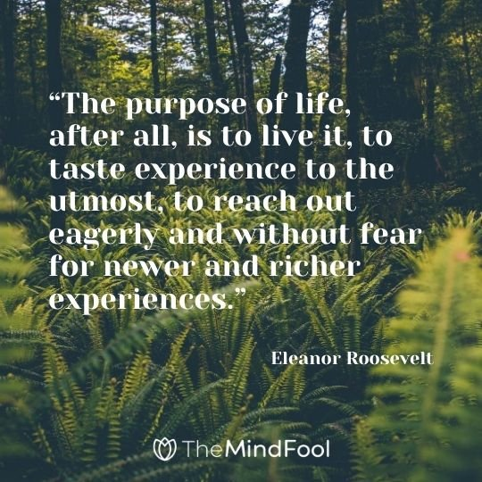 """The purpose of life, after all, is to live it, to taste experience to the utmost, to reach out eagerly and without fear for newer and richer experiences."" -Eleanor Roosevelt"