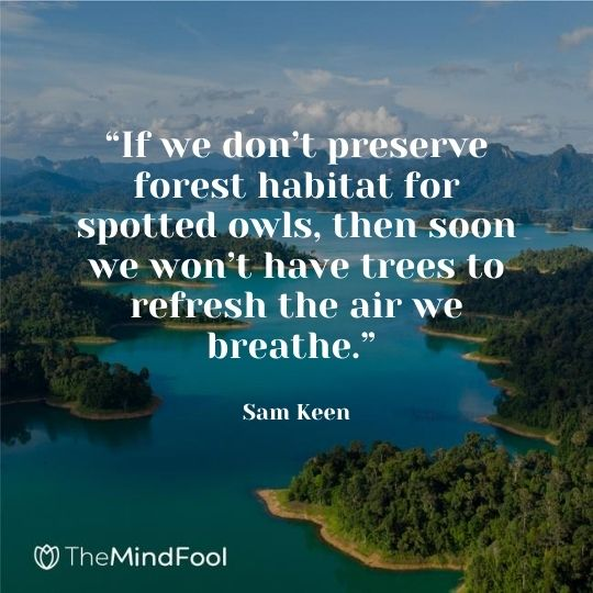 """""""If we don't preserve forest habitat for spotted owls, then soon we won't have trees to refresh the air we breathe."""" – Sam Keen"""