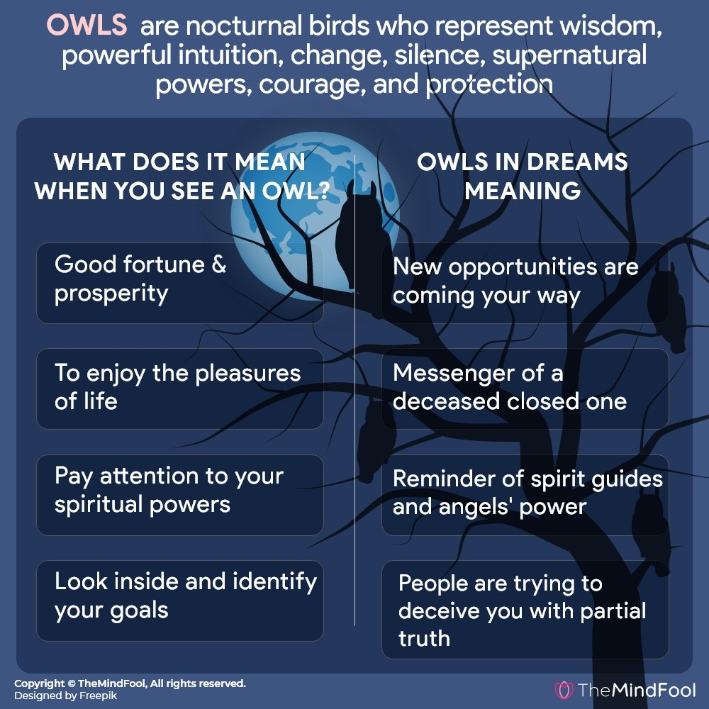 Owl Symbolism – Everything You Need to Know