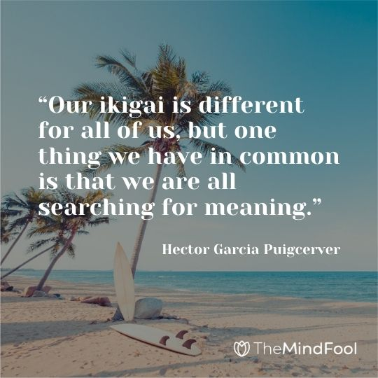 """""""Our ikigai is different for all of us, but one thing we have in common is that we are all searching for meaning."""" ― Hector Garcia Puigcerver"""