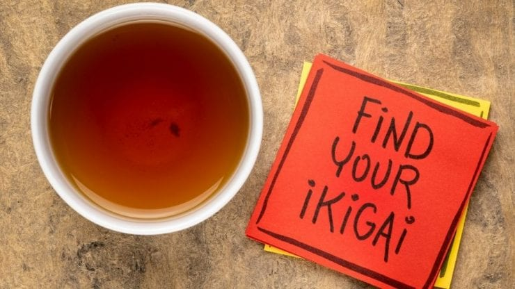 Discovering Ikigai: The Japanese Concept of a Fulfilling Life