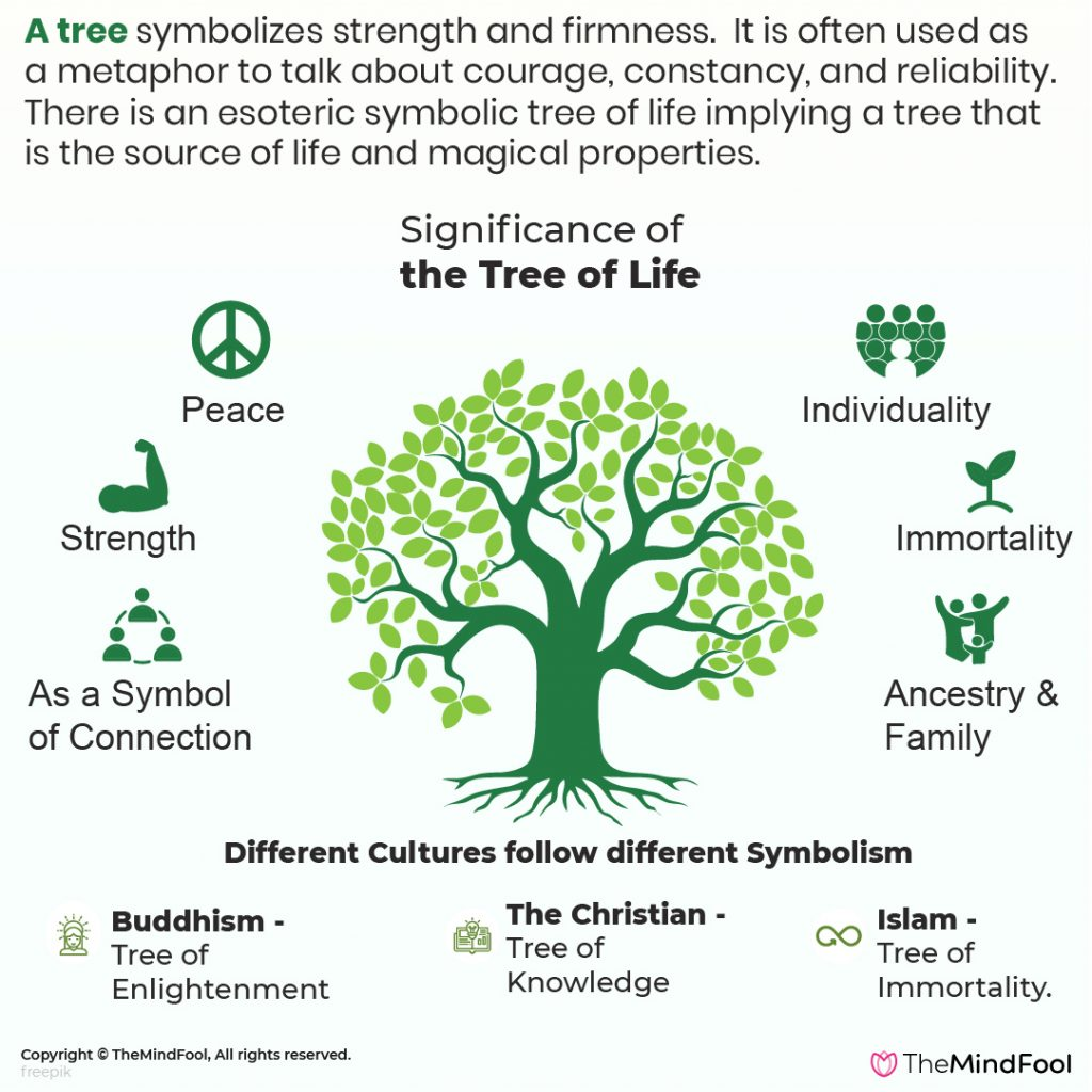 Tree of Life Meaning  What is it and its Symbolism   TheMindFool