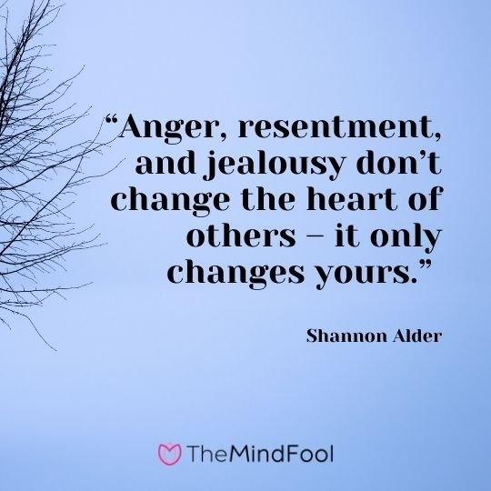 """""""Anger, resentment, and jealousy don't change the heart of others – it only changes yours."""" – Shannon Alder"""