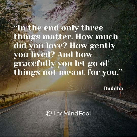 """""""In the end only three things matter. How much did you love? How gently you lived? And how gracefully you let go of things not meant for you."""" – Buddha"""