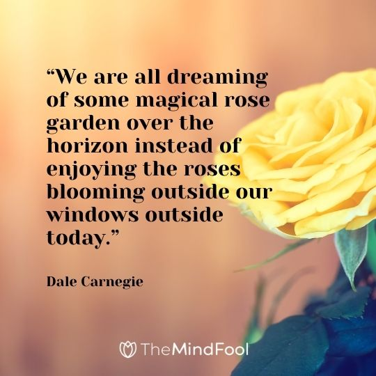 """""""We are all dreaming of some magical rose garden over the horizon instead of enjoying the roses blooming outside our windows outside today."""" – Dale Carnegie"""