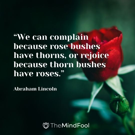 """""""We can complain because rose bushes have thorns, or rejoice because thorn bushes have roses."""" --Abraham Lincoln"""