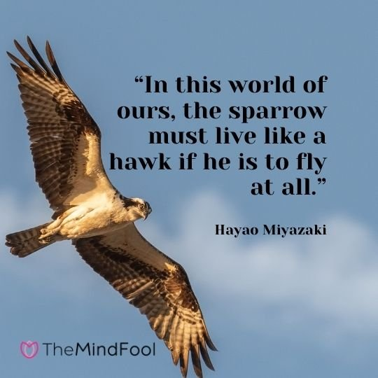 """In this world of ours, the sparrow must live like a hawk if he is to fly at all."" – Hayao Miyazaki"