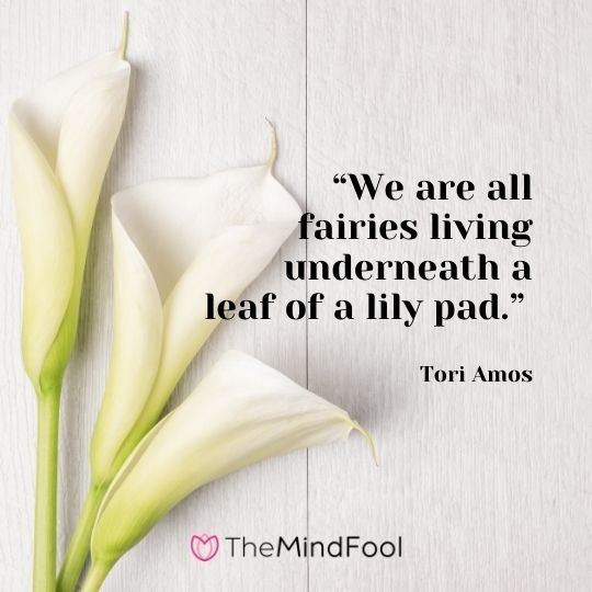 We are all fairies living underneath a leaf of a lily pad. -Tori Amos