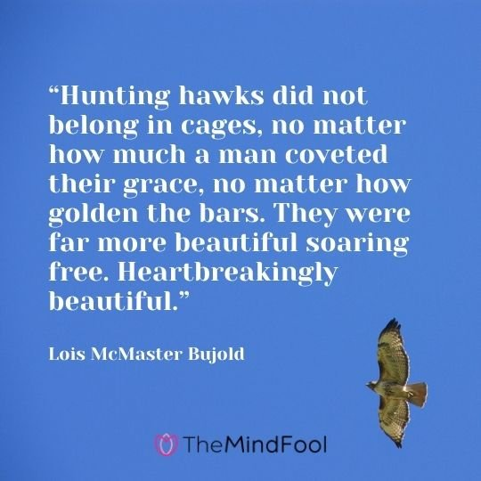 """Hunting hawks did not belong in cages, no matter how much a man coveted their grace, no matter how golden the bars. They were far more beautiful soaring free. Heartbreakingly beautiful."" – Lois McMaster Bujold"