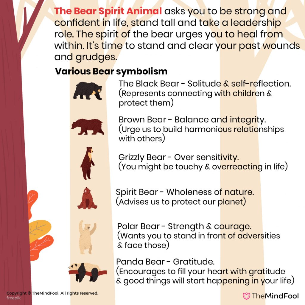 A Complete Guide to Bear Meaning & Symbolism