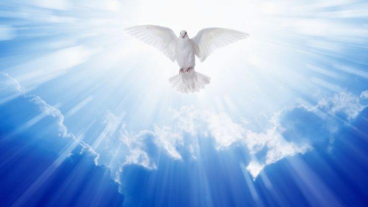 Spirit Guide & Their Healing Presence