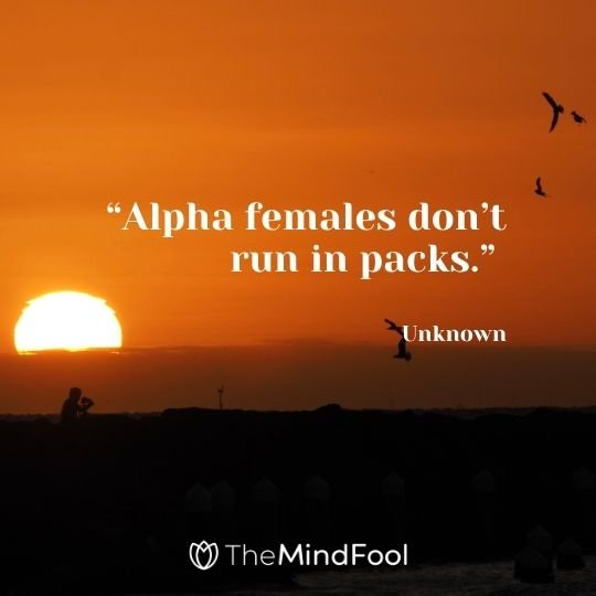"""Alpha females don't run in packs."" Unknown"