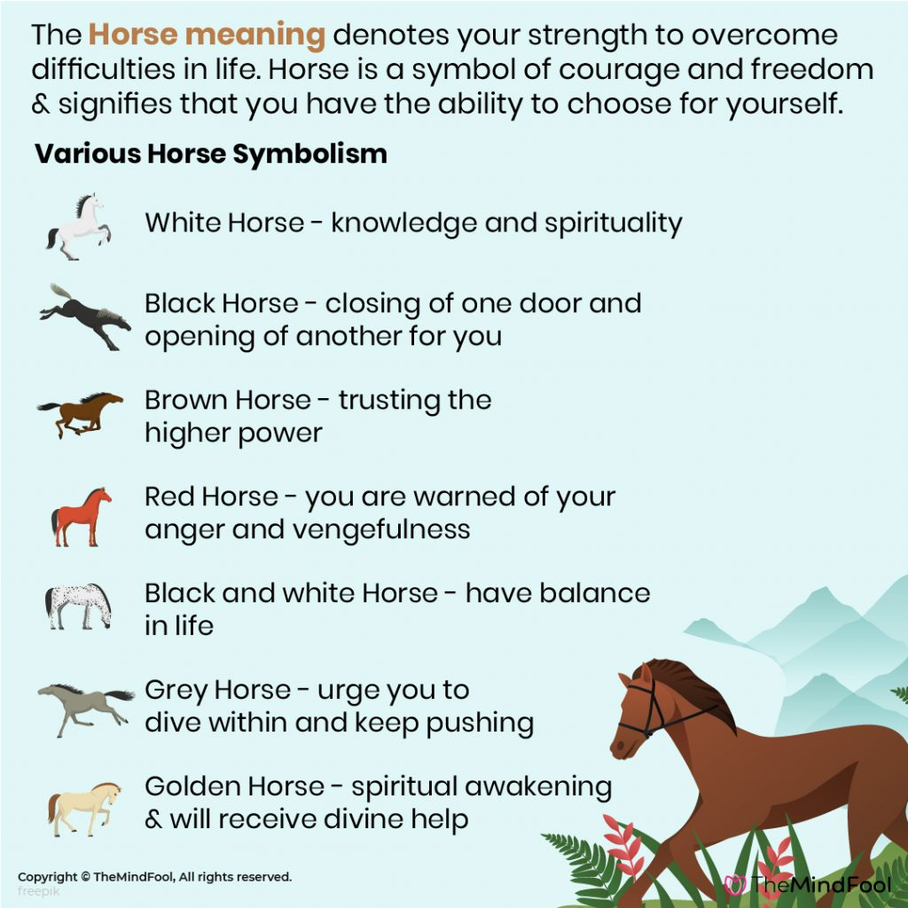 Horse Symbolism & Meaning | The Horse Spirit Animal