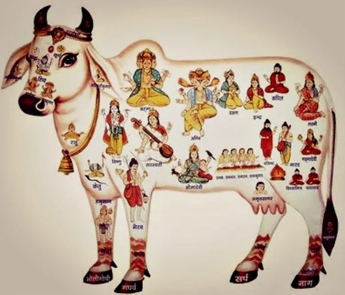 Hope Symbol- Holy Cow